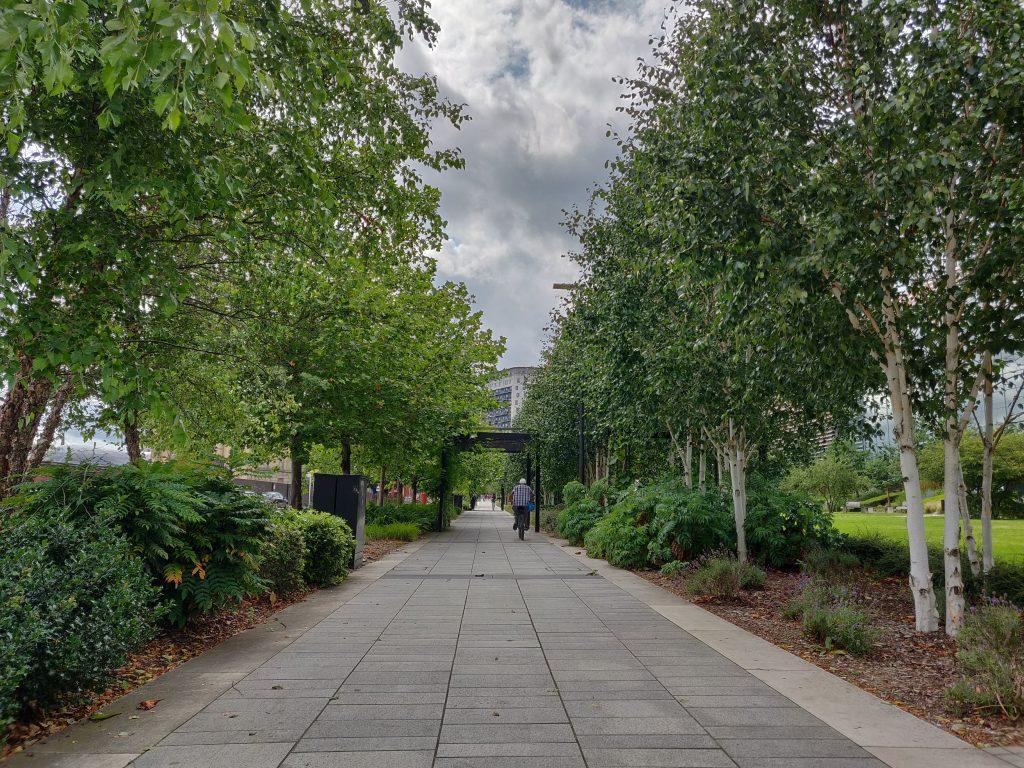 Green urban scene